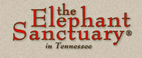 USA Elephant sanctuary